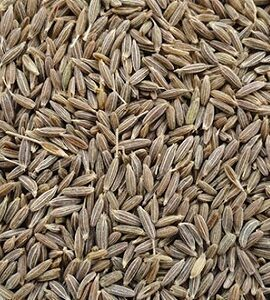 Cumin Seeds Exporter and Supplier by Radha International