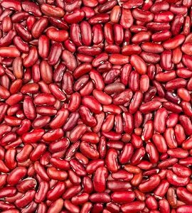 Red Kidney Beans Exporter by Radha International
