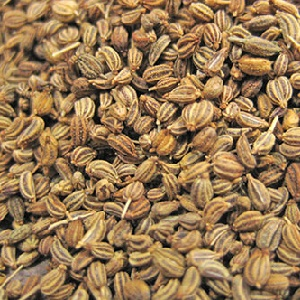 Carom Seeds Exporter and Supplier by Radha International