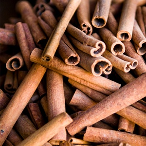 Cinnamon Roll Exporter and Supplier by Radha International