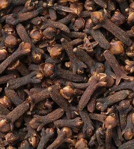 Cloves Whole Exporter and Supplier by Radha International