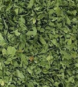 Dry Fenugreek Leaves Exporter and Supplier by Radha International