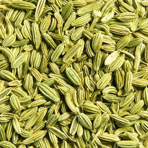 Fennel Seeds Exporter and Supplier by Radha International