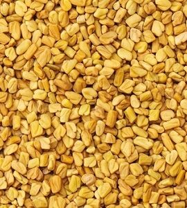 Fenugreek Seeds Exporter and Supplier by Radha International