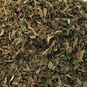 Mint Leaves Exporter and Supplier by Radha International
